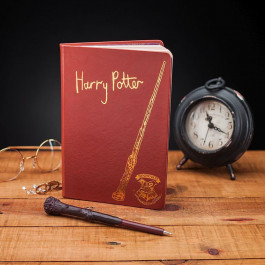 Harry Potter - notes z różdżką Harry'ego